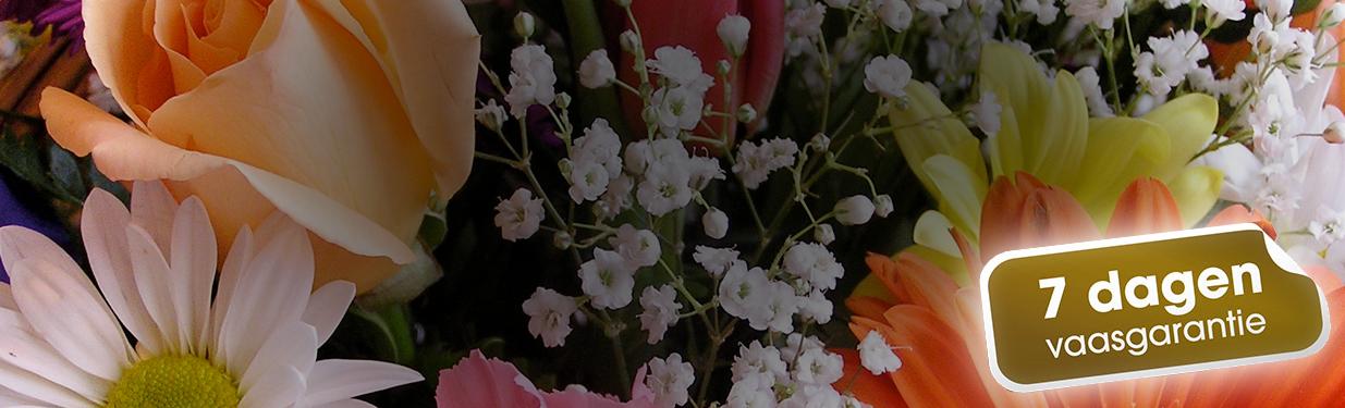Bloemen met een boodschap!